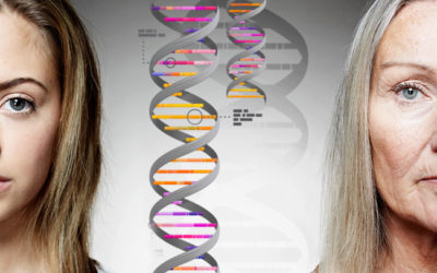 Genetic Genealogy and DNA Testing for Beginners